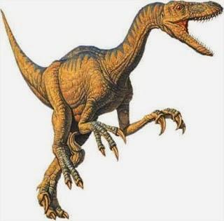 Foto Velociraptor