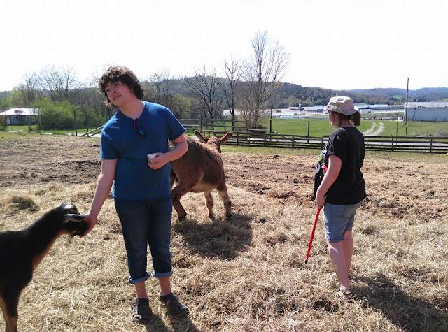Kentucky Down Under Reviews: Petting Zoo