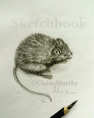 mouse sketch graphite