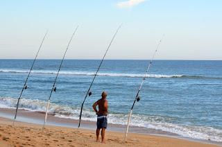 Pancing Ikan Ajaib Pemberian Google Adsense