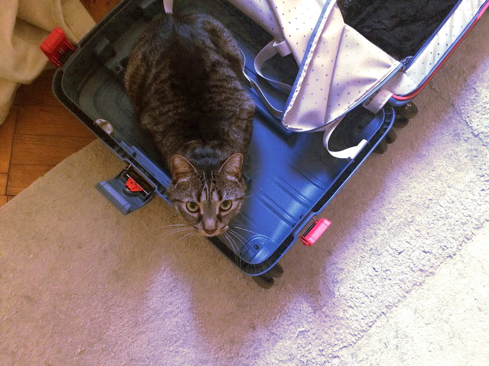 A few tips on packing a suitcase