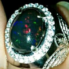 mengatasi black opal keluar minyak