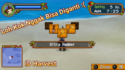 Efek Ngecheat di Harvest Moon: Hero of Leaf Valley