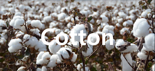 ICE: CT Cotton #2  Futures Trading Strategy Today - Cotton price Long-term forecast and trade ideas