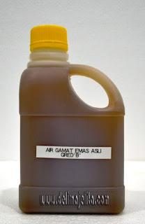 Holothuroidea, gamat, minyak gamat