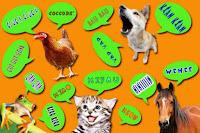 Amazon: Device traducono i versi animali