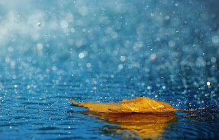 Rain Photography HD wallpapers