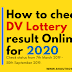 How to check DV lottery 2020 result
