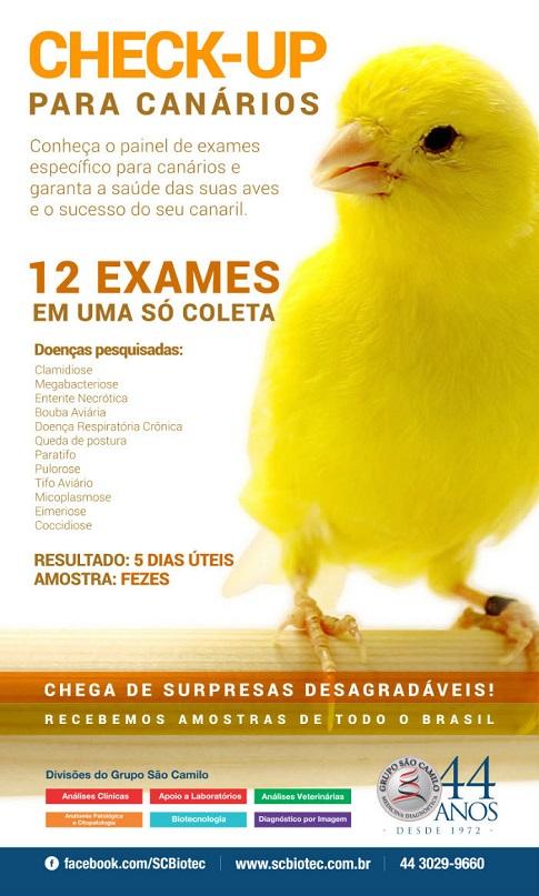 Check-UP para Canários