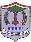 Lowongan CPNS Binjai, Kota Binjai
