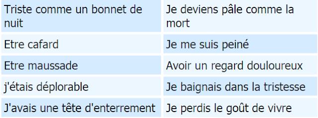 vocabulaire pour exprimer la tristesse en français