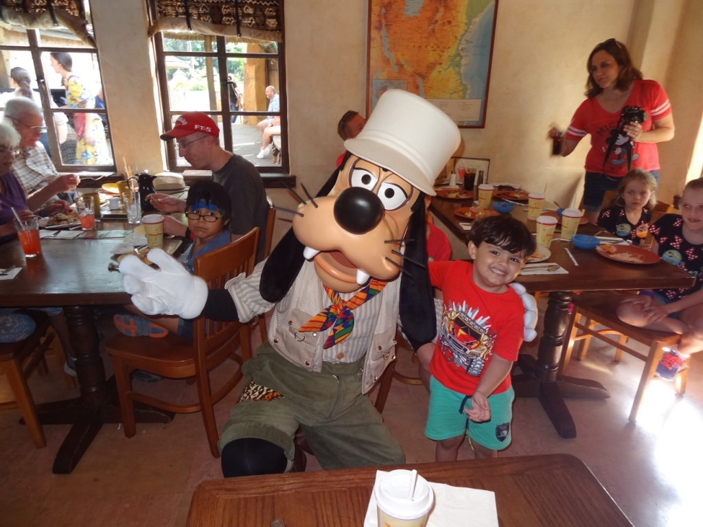 Donald´s Dining Safari Lunch