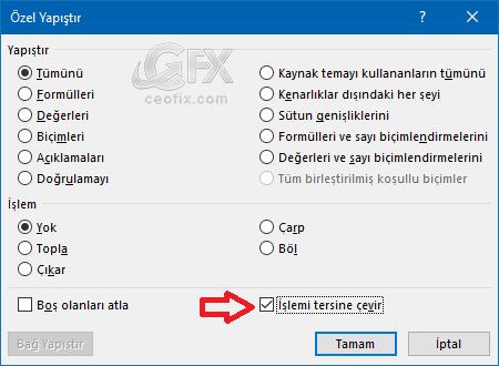 Excel özel yapıştır