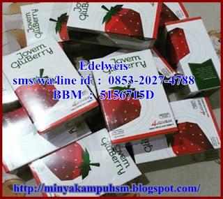 4Jovem Gluberry Kolagen Alami wa 0853-2027-4788 BBM D54F47D