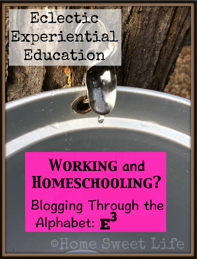 Eclectic Education, Experiential Education, homeschooling, filed trips