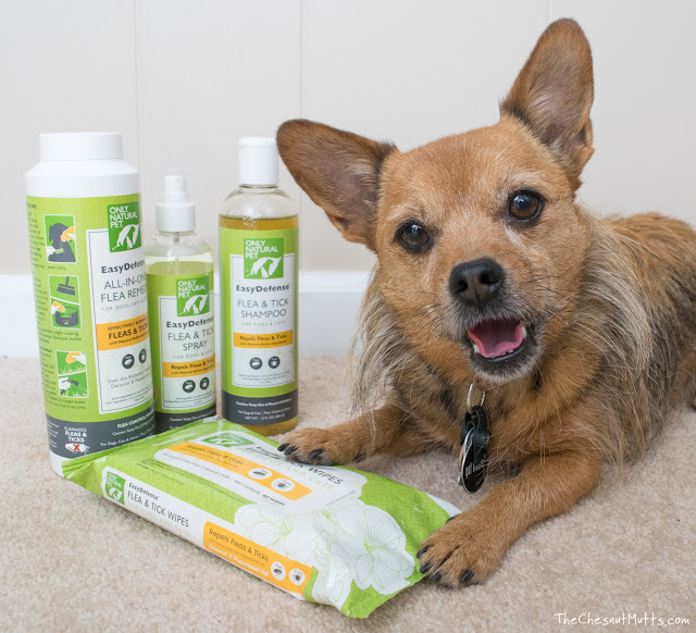 Only Natural Pet Easy Defense Flea Prevention