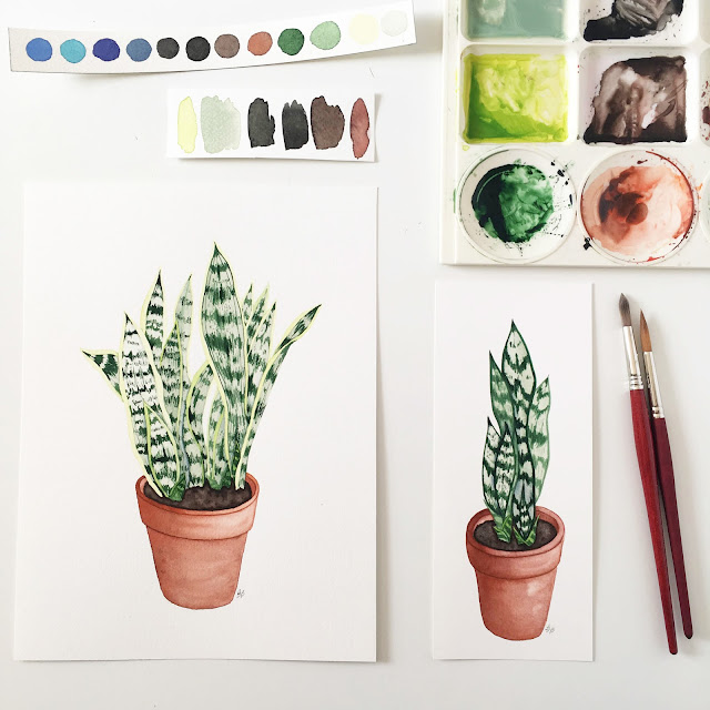 sansevieria, snake plant, mother in law's tongue, houseplants, watercolor painting, houseplant paintings, Anne Butera, My Giant Strawberry
