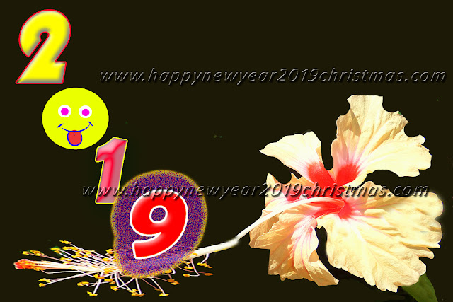 happy new year 2019 images in advance