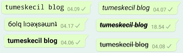 8 Cara Mengubah Gaya Teks (Font) di WhatsApp Jadi tebal, Miring, Tercoret, Terbalik, dll