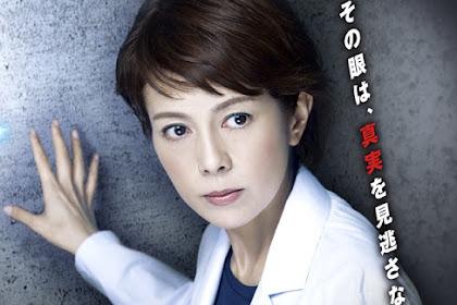 Sinopsis The Woman of S.R.I. Season 13 (2013) - Serial TV Jepang