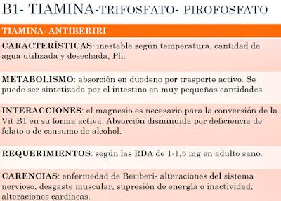Vitamina B1 fuentes propiedades funciones