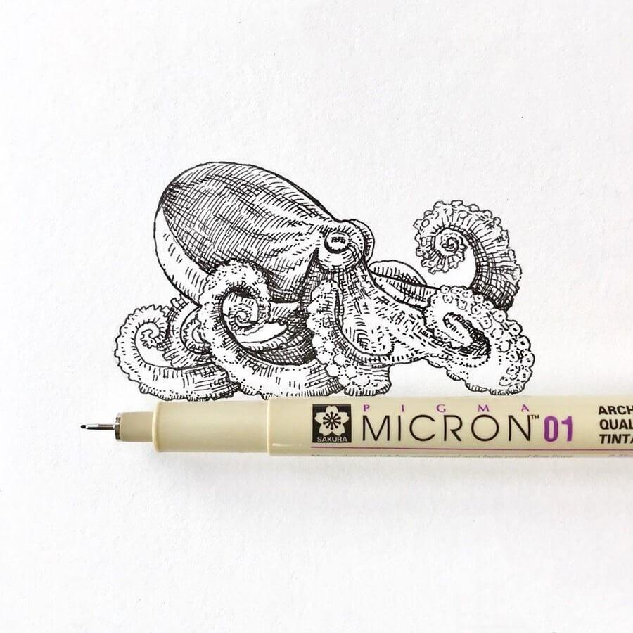 13-Octopus-August-Lamm-www-designstack-co