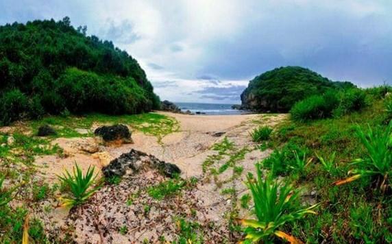 Pantai Kayu Arum Gunung Kidul Yogyakarta