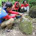Ekspedisi Penelusuran Situs Megalitikum di Lereng Hyang/Argopuro