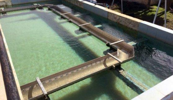 إعادة تشغيل محطة تصفية مياه سد الروم في السويداء