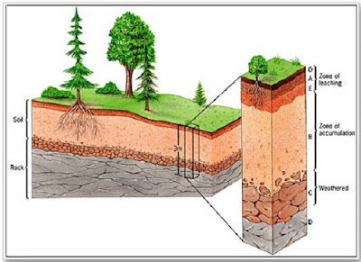 Lapisan tanah dan macam - macam lapisan tanah - berbagaireviews.com