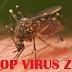 Cara Mudah Mencegah Virus Nyamuk DBD dengan Aplikasi Android