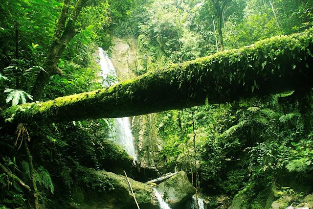 selama ini riau dianggap salah satu di antara sedikit Provinsi di indonesia yang tidak me Gunung Djadi Yang Tersembunyi Kabupaten Kampar