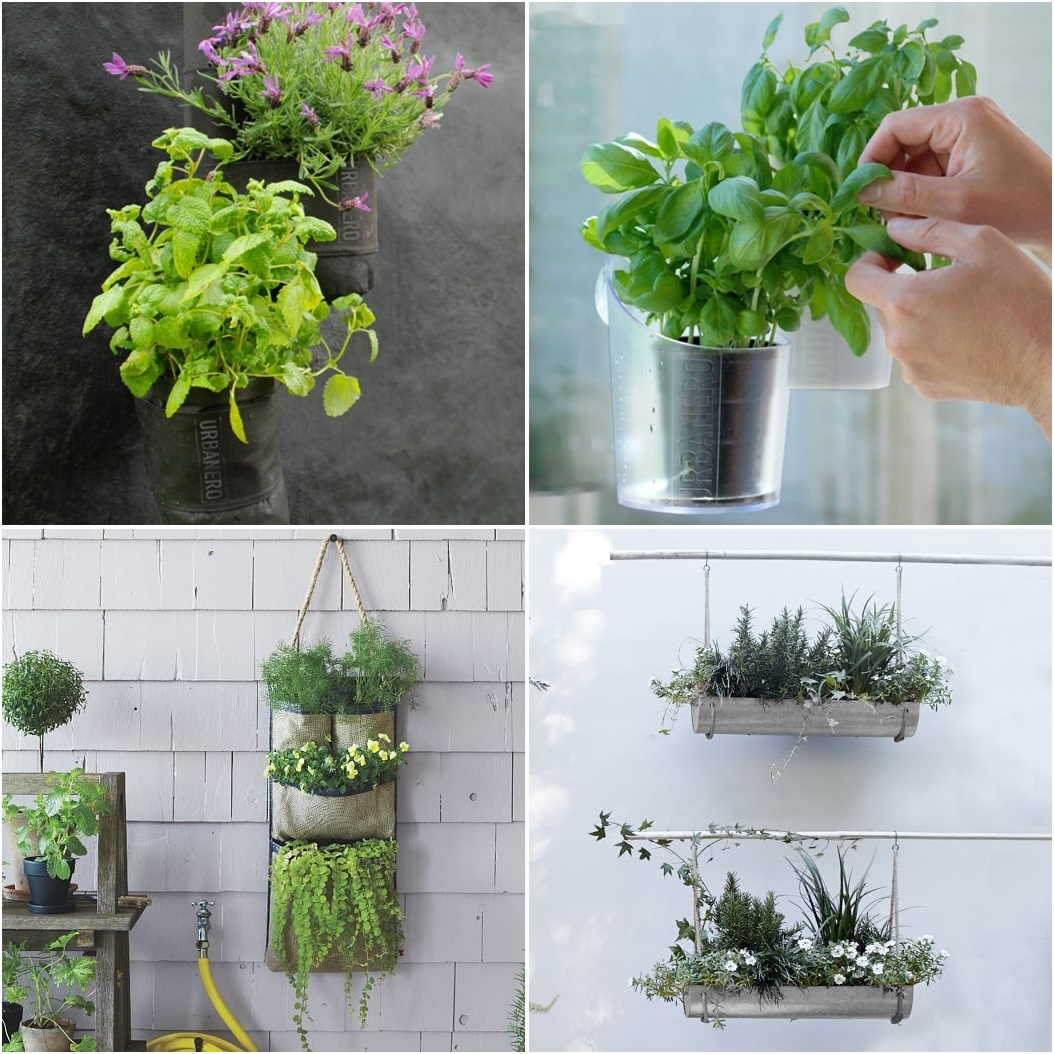 Products for the urban porch or balcony to grow herbs, berries and ...