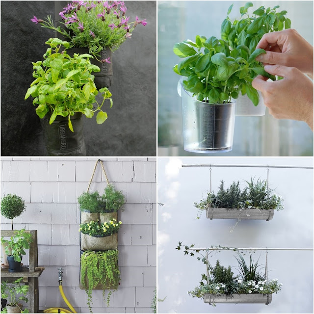 Products for the urban porch or balcony to grow herbs, berries and vegetables
