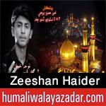 http://www.humaliwalayazadar.com/2016/10/zeeshan-haider-nohay-2017.html