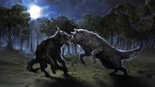 Sirius, Animagus cane nero, lotta contro Remus, Lupo Mannaro fuori controllo
