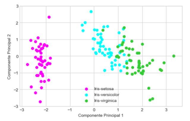 Representación gráfica del dataset en un espacio 2D