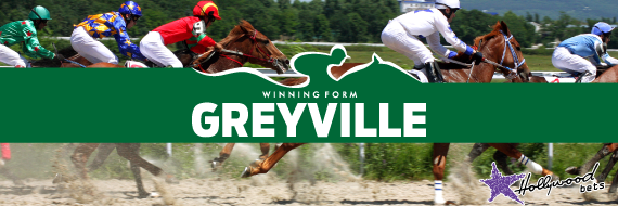 Greyville-Best-Bets-And-Tips