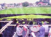 1993 Yayoi Village Inakadate Rice Field Tanbo Art 平成5年 「弥生の里いなかだて」 田舎館田んぼアート 稲文字