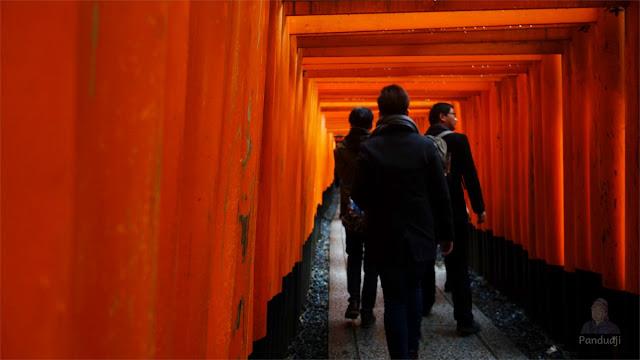 Torii Gate di Fushimi Inari Taisha