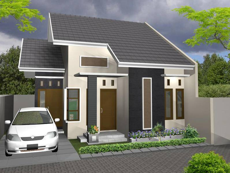 Desain Rumah Minimalis Satu Lantai Cool