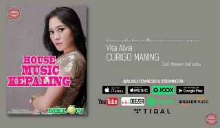 Lirik Lagu Curigo Maning - Vita Alvia
