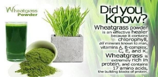 Barham Herbal Cure