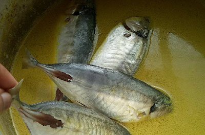 Resepi Ikan Selar Kuning Masak Lemak Cili Api