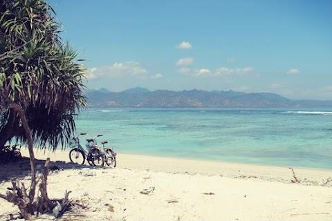 Top 10 Luxury Eco-Friendly Resorts