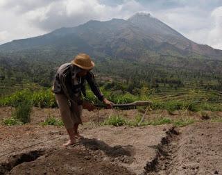 Definisi Pengolahan Tanah dan Tujuannya