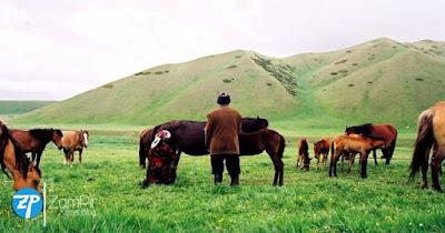 Eski Türklerde Atın Önemi ve Kımız