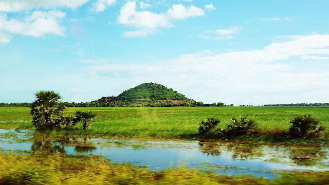 Изображение рисового поля и холма на горизонте
