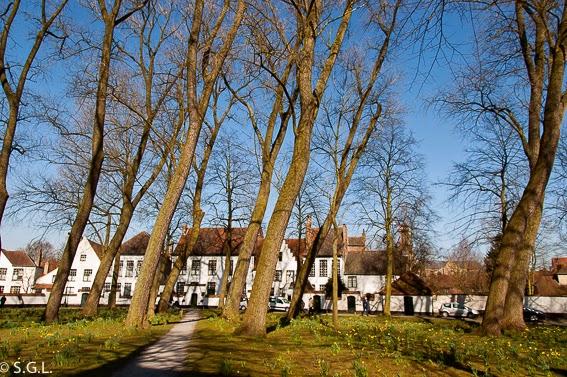 Vista de Begijnhof