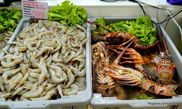 Frutos do mar na Ceasinha de Salvador: camarões e lagostas
